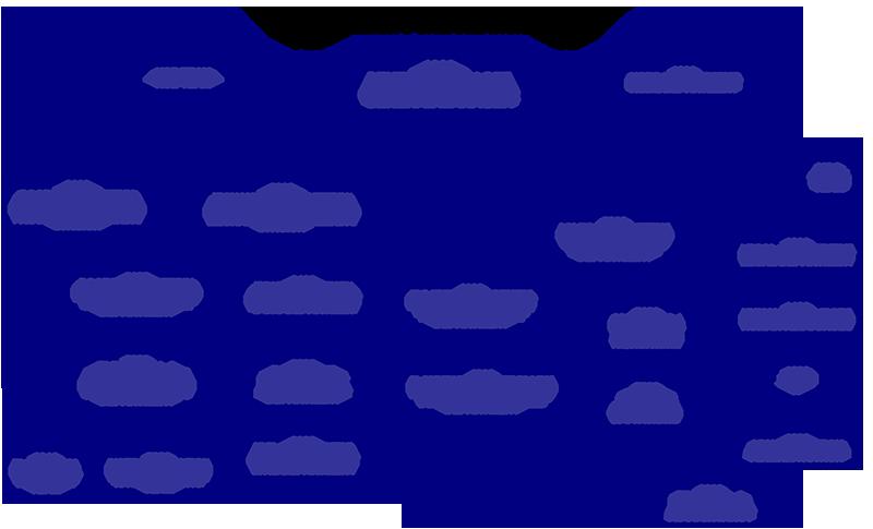 PETRODESIGN-Organization-chart